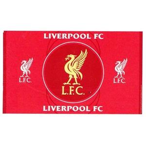 Liverpool Fc Flag  Liverbird Flag   Football Shirts