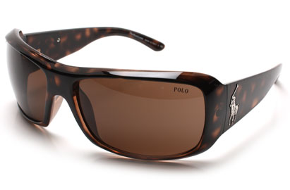 Polo 4039 Tortoise Sunglasses