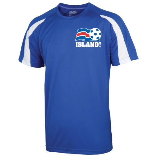 Image of 2016-17 Iceland Sports Training Jersey