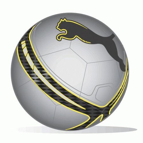 Puma Universal Ms Football (silver)