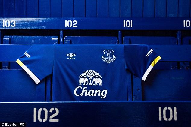 Everton Home Kit 2016-17 Banner