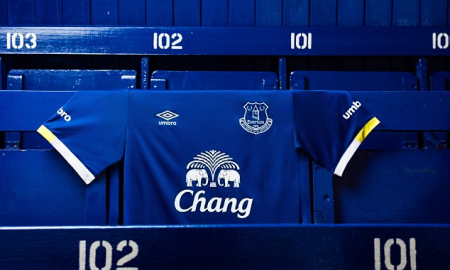 Everton Home Kit 2016-17 Banner