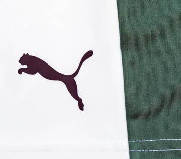 Plymouth Argyle Away Kit 2016-17 Puma
