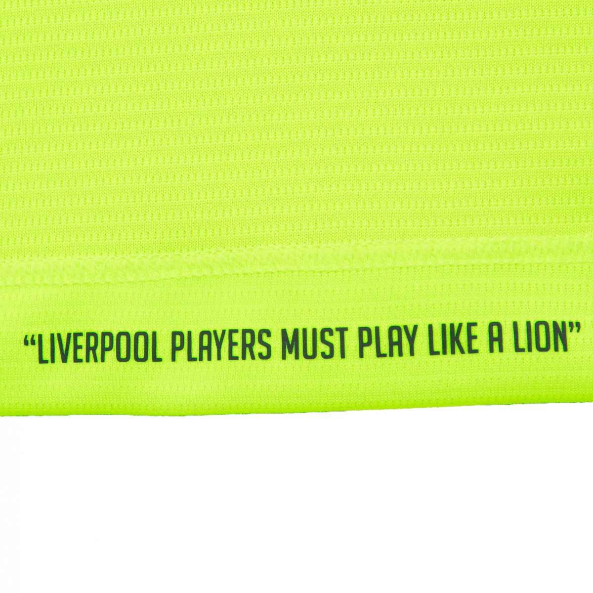 Liverpool Third Kit 2016-17 Shirt Motif