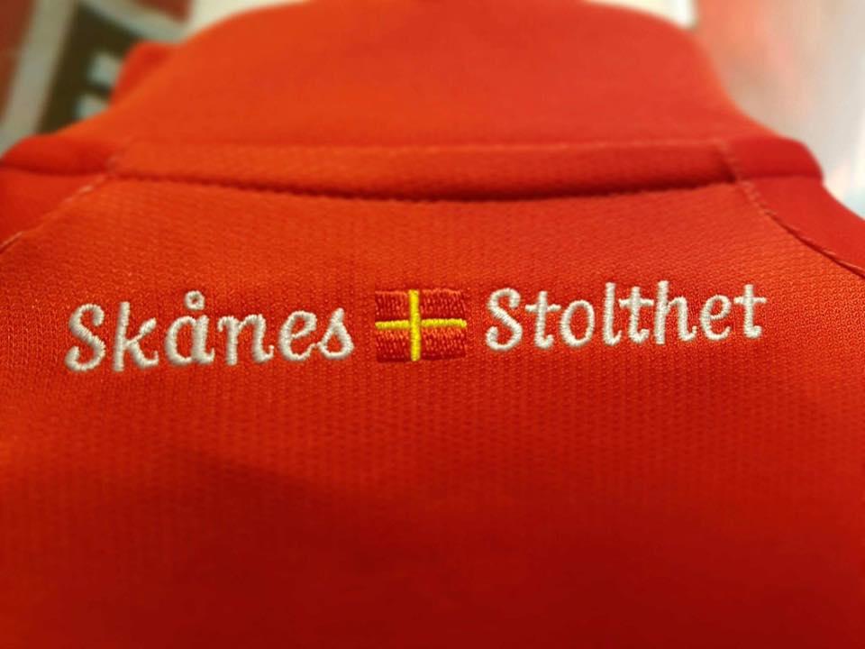 helsingborgs-2017-puma-jersey-neck
