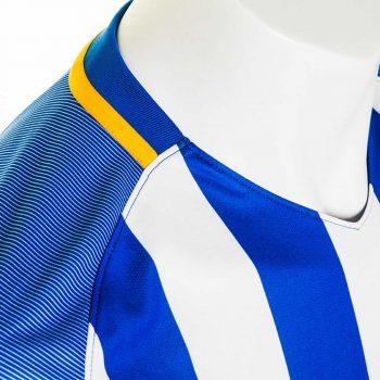 brighton-hove-albion-17-18-premier-league-home-kit-collar