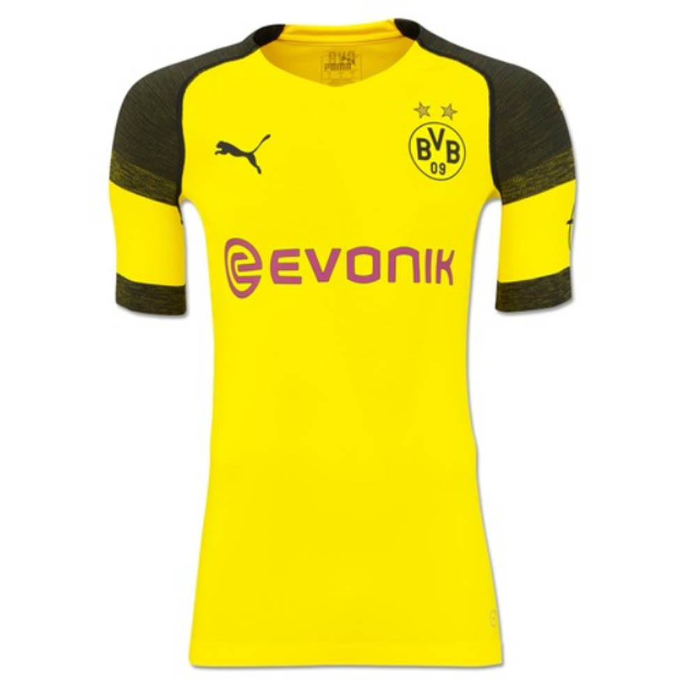 huge selection of 8c48f 9ff7d 2018-2019 Borussia Dortmund Puma Authentic evoKNIT Home Football Shirt