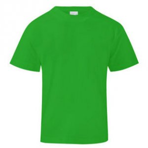 Slovenia Subbuteo T-Shirt