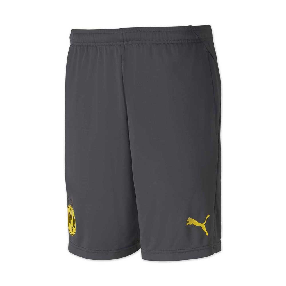 2020-2021 Borussia Dortmund Training Shorts Zip (Asphalt)
